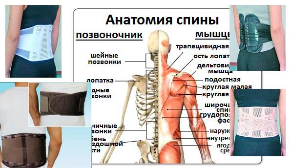 Болит спина в области поясницы после операции